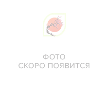 Питание и увлажнение, 640081 All New Cosmetic, Vanedo, Beaute Friends Антиоксидантная маска для лица с эссенцией зеленого чая, 25 гр.